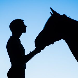 Silhouette of horse and lady